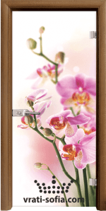 Стъклена интериорна врата, Print G 13-2