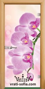Стъклена интериорна врата, Print G 13-3 Pink