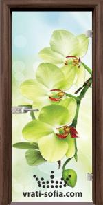 Стъклена интериорна врата, Print G 13-3
