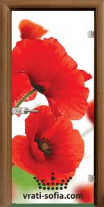 Стъклена интериорна врата, Print G 13-8
